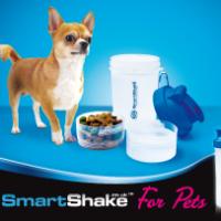 dog_small