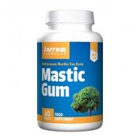 Mastic Gum 500 60's