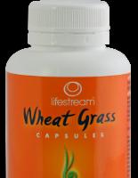Wheat Grass 120's