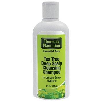 Tea Tree Scalp Care Shampoo 250ml