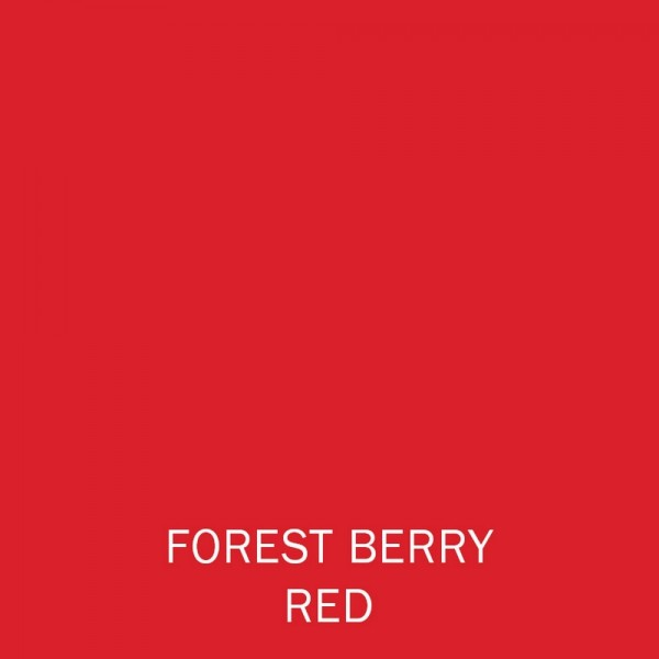Forest Berry Red Lipstick 4g