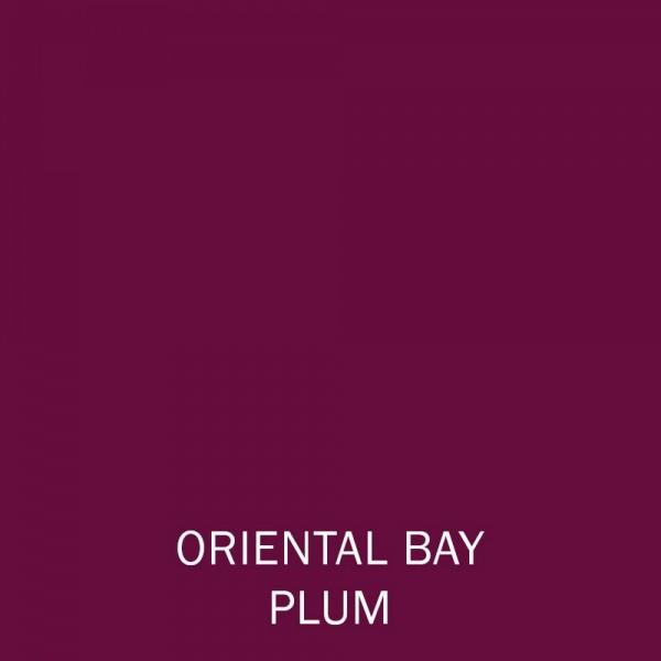 Orient Bay Plum Lipstick 4g