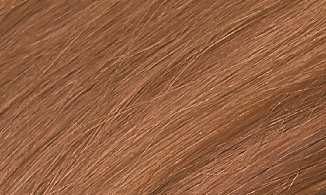 8C Copper Blonde