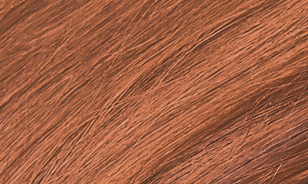 7C Terracotta Blonde