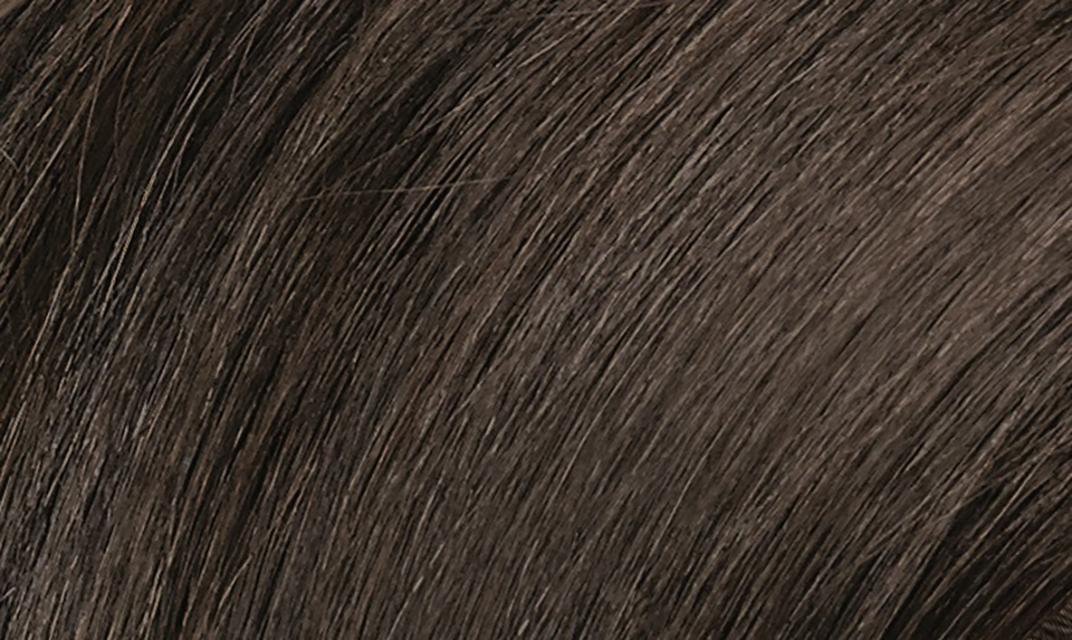 3N Dark Chestnut Brown