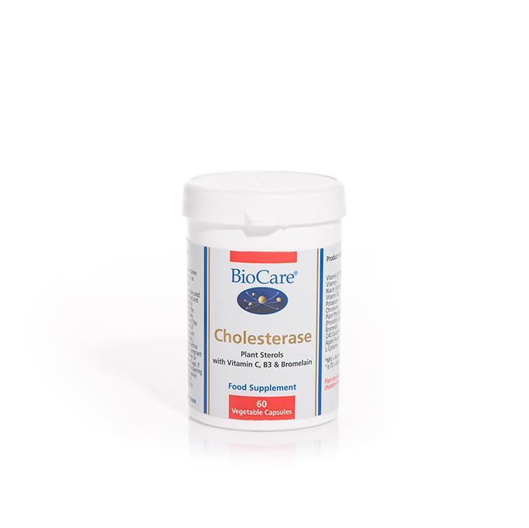 Cholesterase 60's