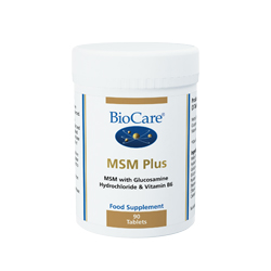 MSM Plus 90's