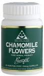 Chamomile Flowers 60's