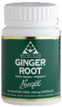 Ginger Root 60's