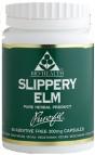 Slippery Elm 60's