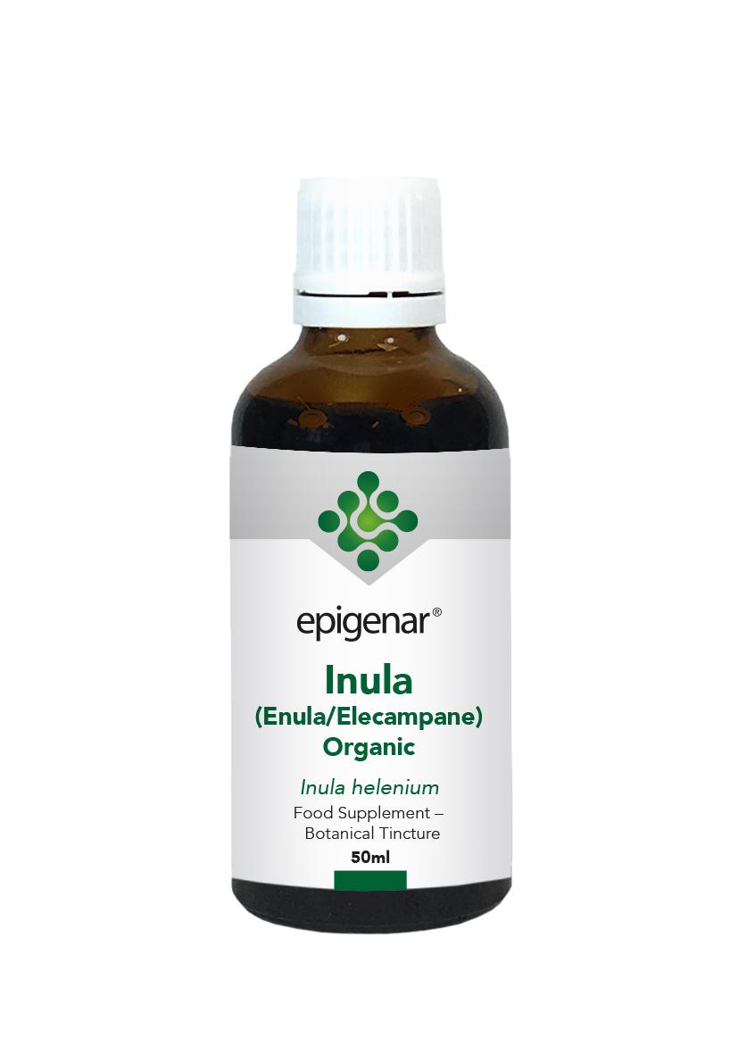 Inula (Enula/Elecampane) Organic Tincture 50ml (Currently Unavailable)