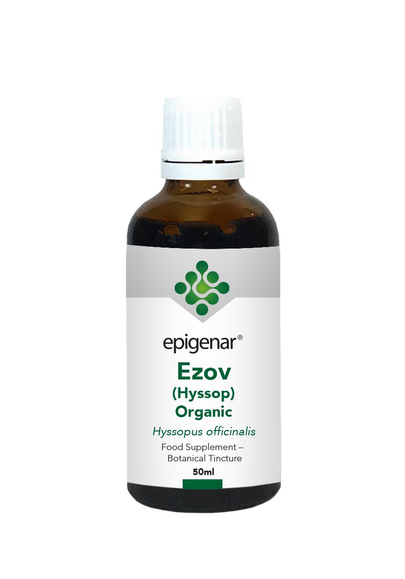 Ezov (Hyssop) Organic Tincture 50ml (Currently Unavailable)