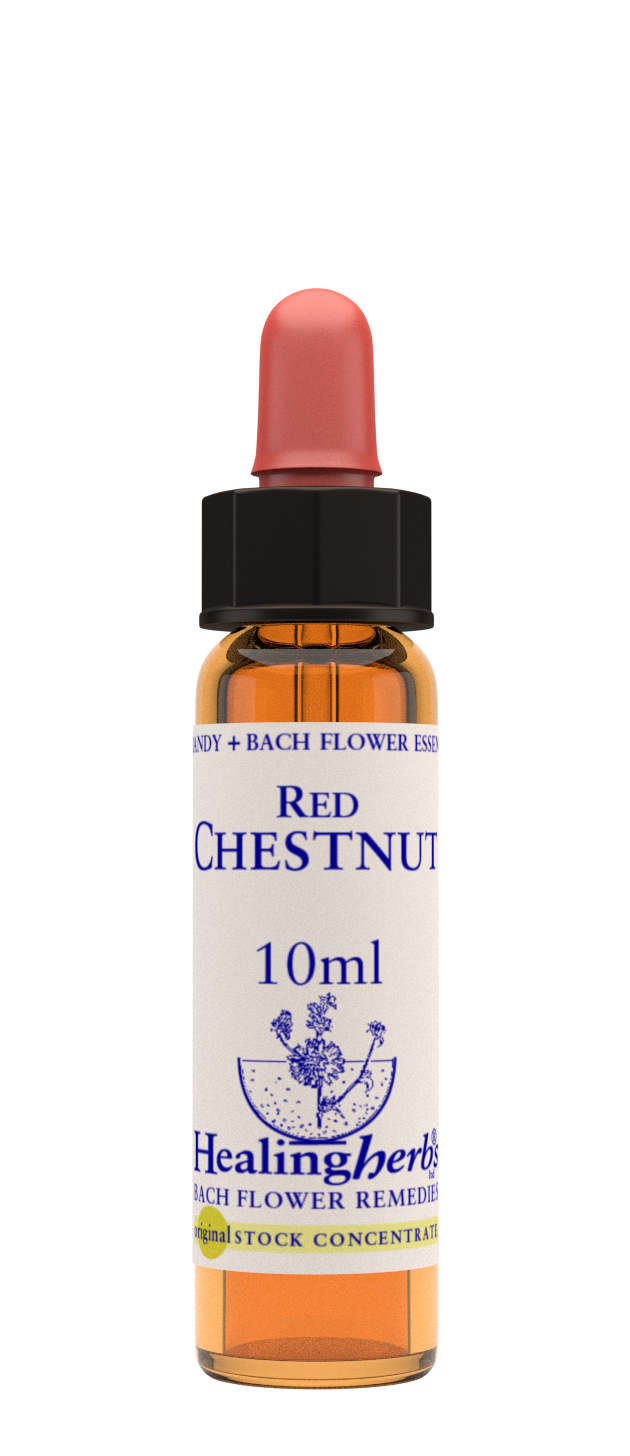 Red Chestnut 10ml