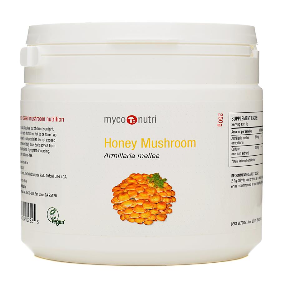 Honey Mushroom Powder 250g