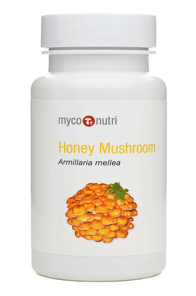 Honey Mushroom 60's