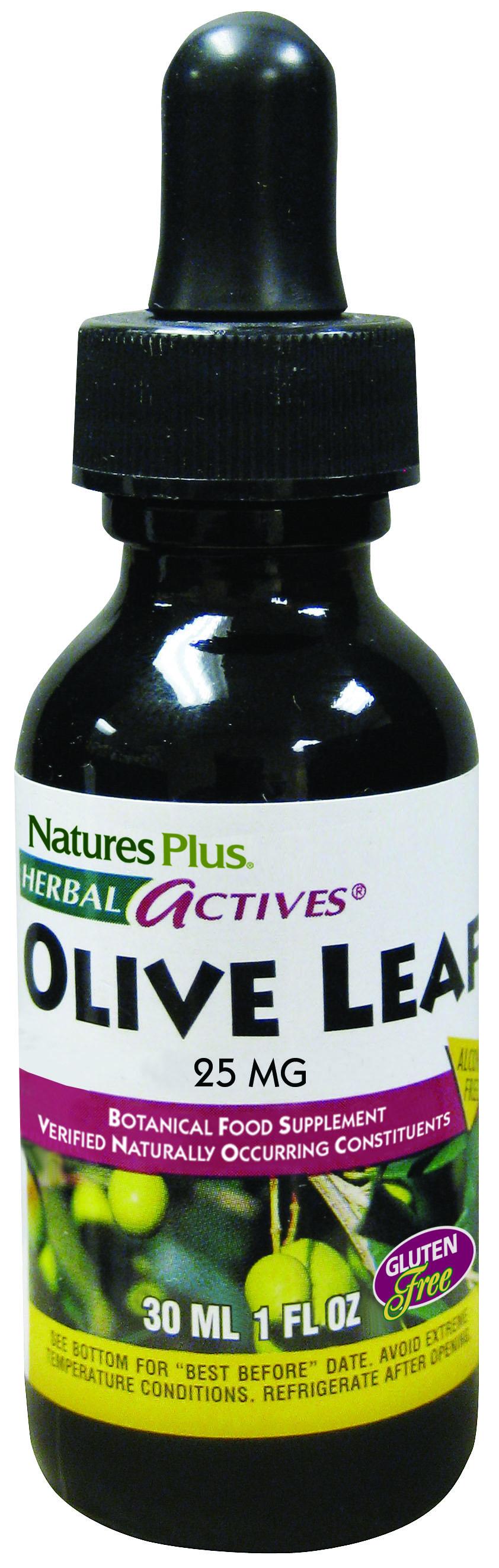 Olive Leaf 30ml