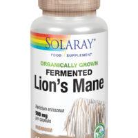 Organically Grown Fermented Lions Mane Mushroom 60's