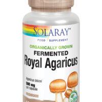 Organically Grown Fermented Royal Agaricus Mushroom 60's