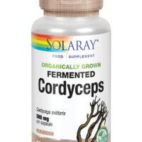 Organically Grown Fermented Cordyceps Mushroom 60's