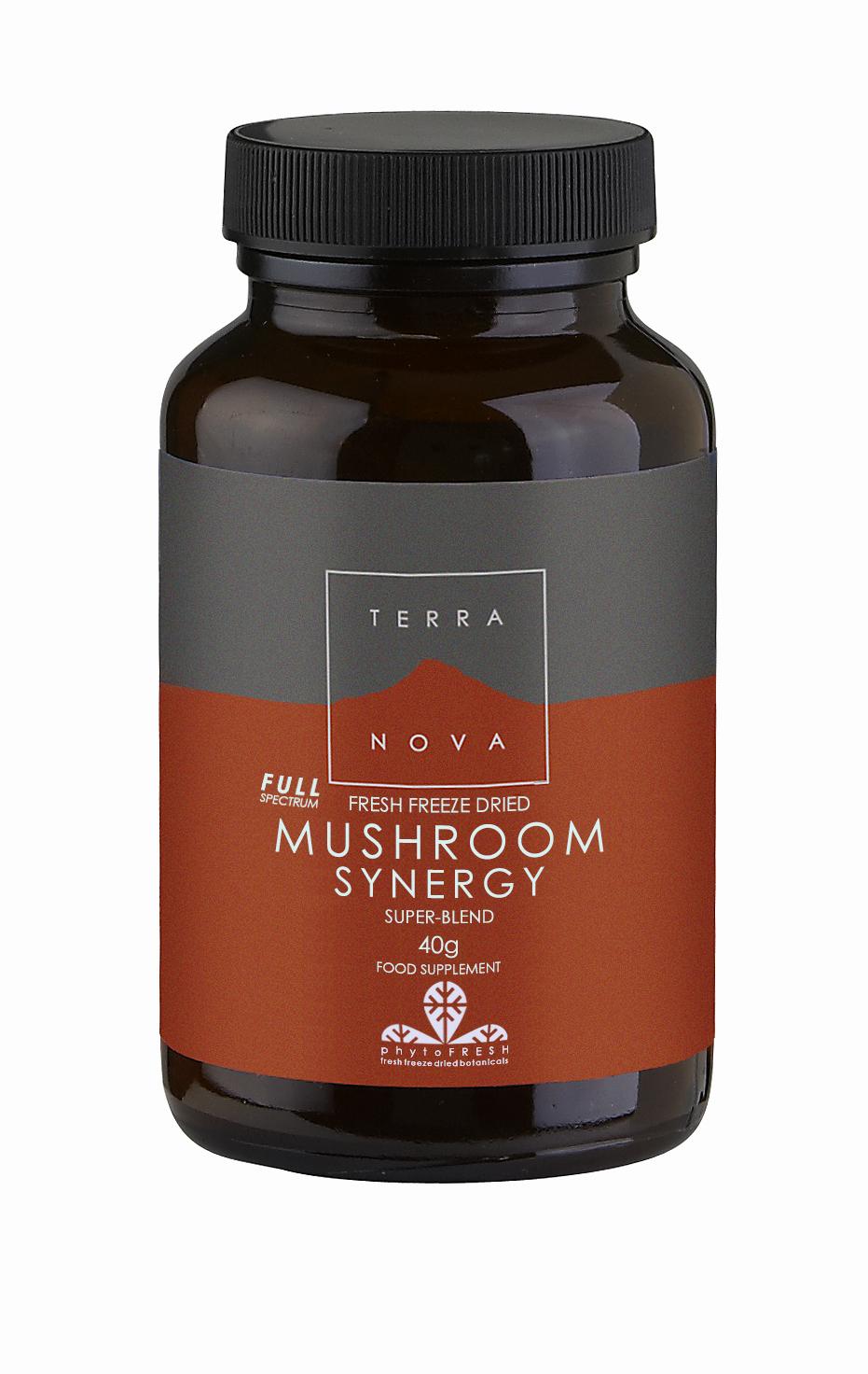 Mushroom Synergy Super-Blend Powder 40g