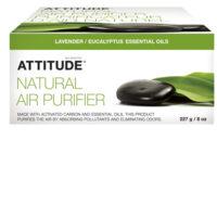 air_purifier_eucalyptus
