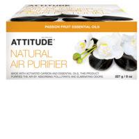 air_purifier_passion_fruit